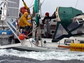 Journal de bord voilier Cypraea Ovni 385