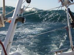vagues atlantique sud